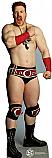 Sheamus - WWE Cardboard Cutout Standup Prop