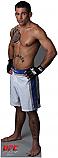 Joe Brammer - UFC Cardboard Cutout Standup Prop